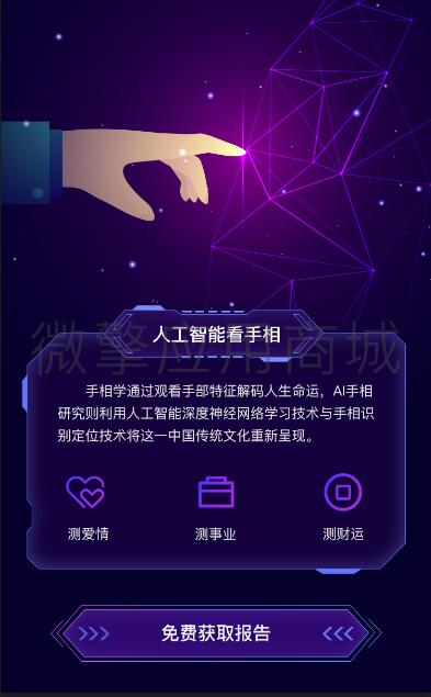 wq模块AI面相手相v3.1.3原版-渔枫源码分享网